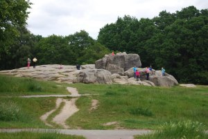 The Wellington Rocks